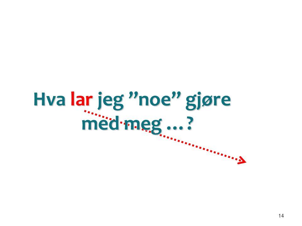 """14 Diabetes Skilsmisse Kols Infarkt Arbeidsløshet Rus Demens Sorg Foreldrerollen Angst Hjelperrollen Hva lar jeg """"noe"""" gjøre med meg …?"""