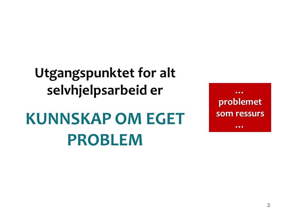 3 Utgangspunktet for alt selvhjelpsarbeid er KUNNSKAP OM EGET PROBLEM … problemet som ressurs …
