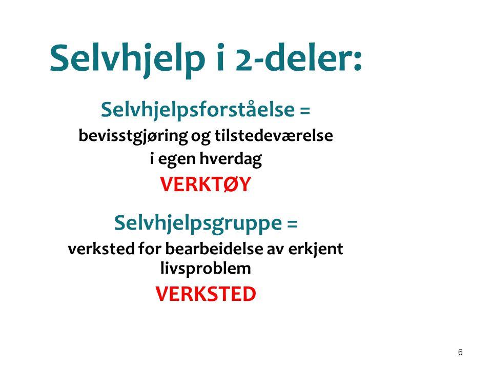6 Selvhjelp i 2-deler: Selvhjelpsforståelse = bevisstgjøring og tilstedeværelse i egen hverdag VERKTØY Selvhjelpsgruppe = verksted for bearbeidelse av