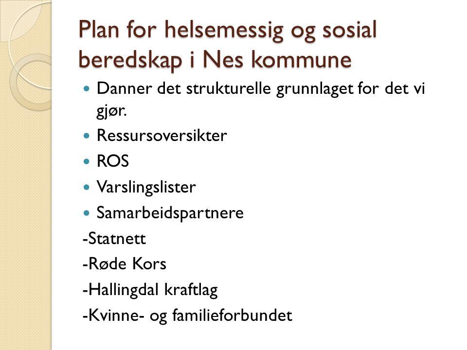 Plan for helsemessig og sosial beredskap i Nes kommune  Danner det strukturelle grunnlaget for det vi gjør.  Ressursoversikter  ROS  Varslingslist