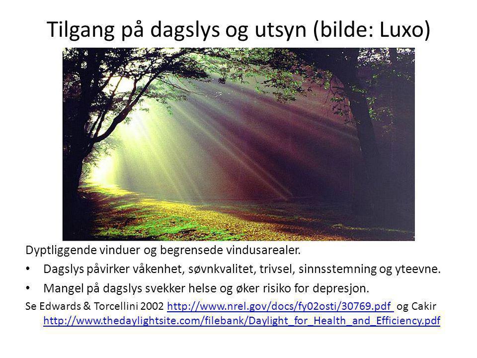 Tilgang på dagslys og utsyn (bilde: Luxo) Dyptliggende vinduer og begrensede vindusarealer. • Dagslys påvirker våkenhet, søvnkvalitet, trivsel, sinnss