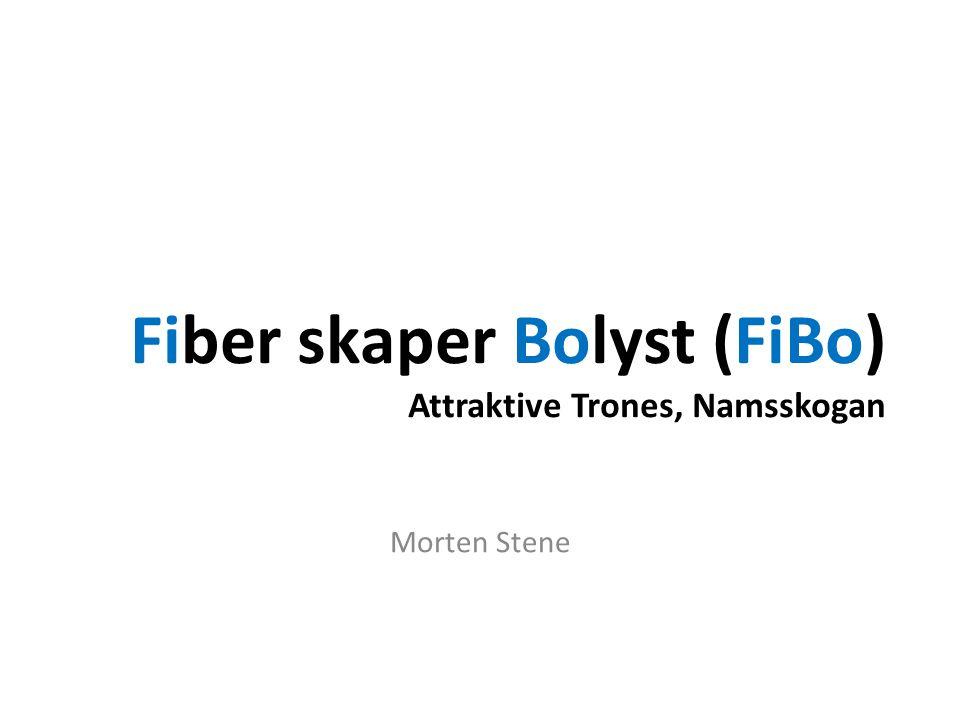 Fiber skaper Bolyst (FiBo) Attraktive Trones, Namsskogan Morten Stene