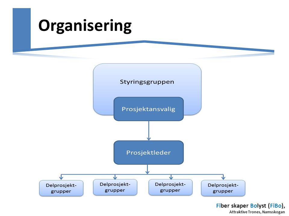 Fiber skaper Bolyst (FiBo), Attraktive Trones, Namsskogan Organisering