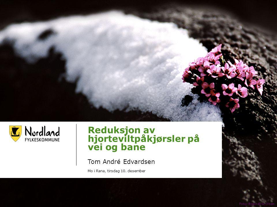 Reduksjon av hjorteviltpåkjørsler på vei og bane Tom André Edvardsen Mo i Rana, tirsdag 10.