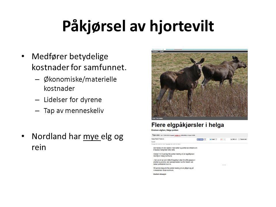 Påkjørsel av hjortevilt • Medfører betydelige kostnader for samfunnet.