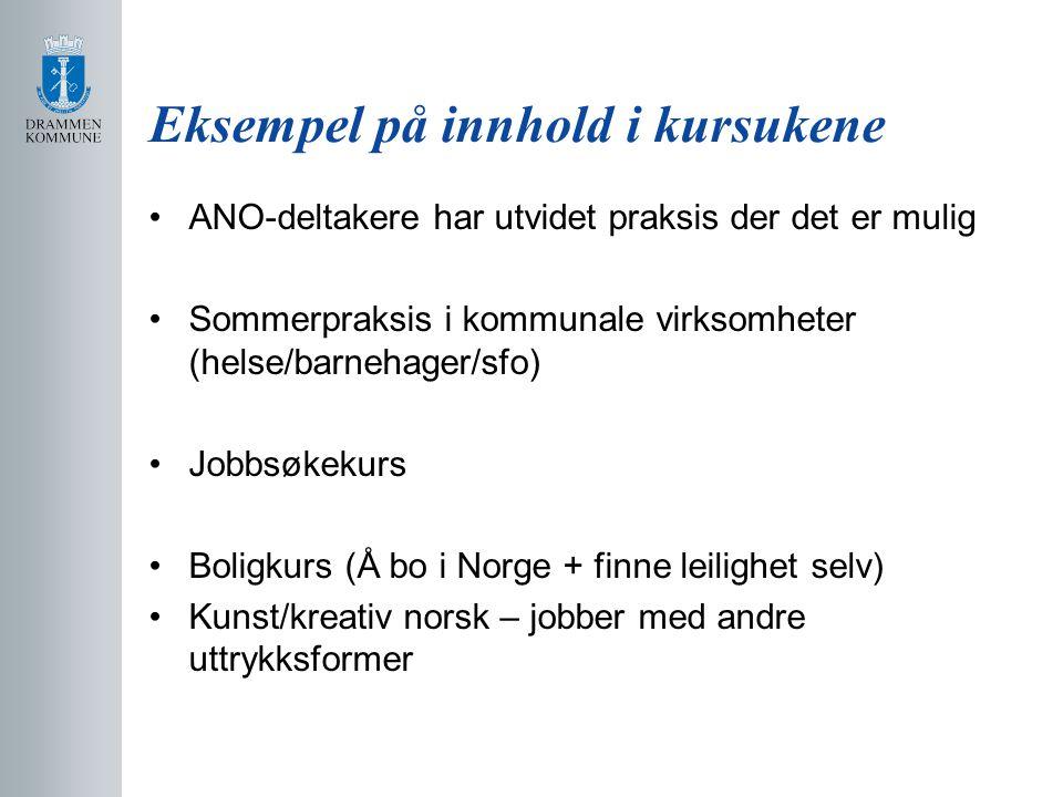 Eksempel på innhold i kursukene •ANO-deltakere har utvidet praksis der det er mulig •Sommerpraksis i kommunale virksomheter (helse/barnehager/sfo) •Jobbsøkekurs •Boligkurs (Å bo i Norge + finne leilighet selv) •Kunst/kreativ norsk – jobber med andre uttrykksformer