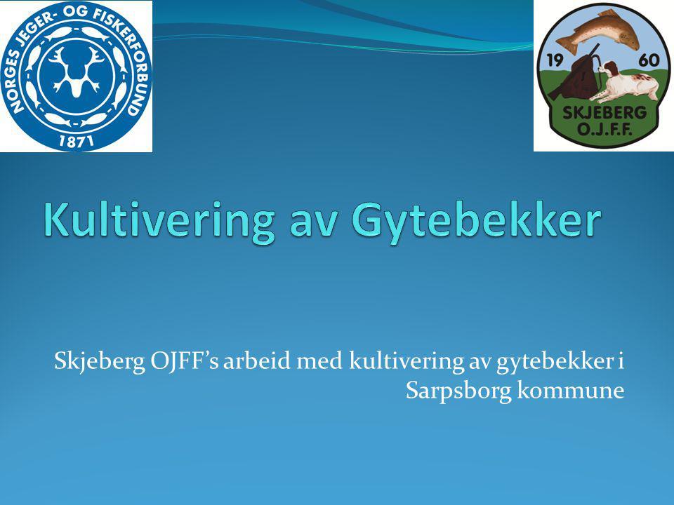 Skjeberg OJFF's arbeid med kultivering av gytebekker i Sarpsborg kommune