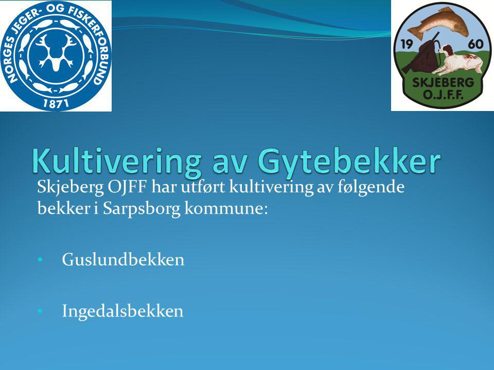 Skjeberg OJFF har utført kultivering av følgende bekker i Sarpsborg kommune: • Guslundbekken • Ingedalsbekken
