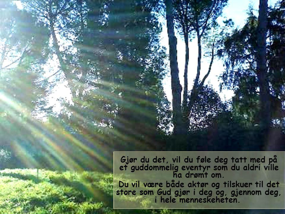 I livet blir den kristne, og mennesket av god vilje, kalt til å gå solen i møte.