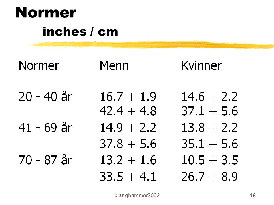 blanghammer200218 Normer inches / cm
