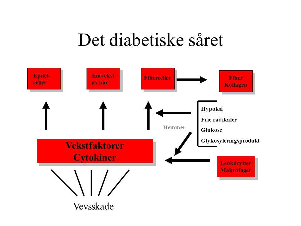Det diabetiske såret Vekstfaktorer Cytokiner Vekstfaktorer Cytokiner Leukocytter Makrofager Leukocytter Makrofager Fiber Kollagen Fiber Kollagen Epite