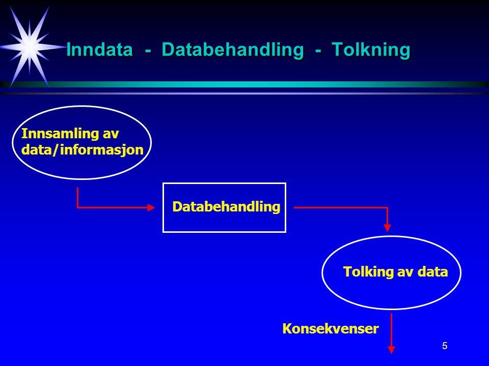5 Inndata - Databehandling - Tolkning Databehandling Innsamling av data/informasjon Tolking av data Konsekvenser