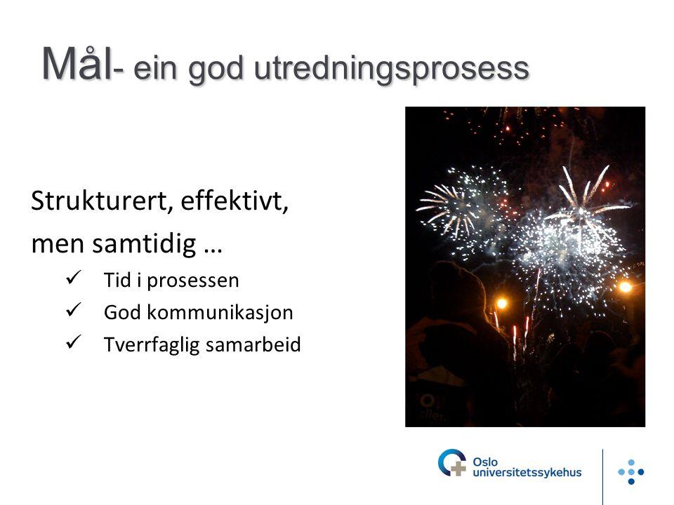 Mål - ein god utredningsprosess Strukturert, effektivt, men samtidig …  Tid i prosessen  God kommunikasjon  Tverrfaglig samarbeid