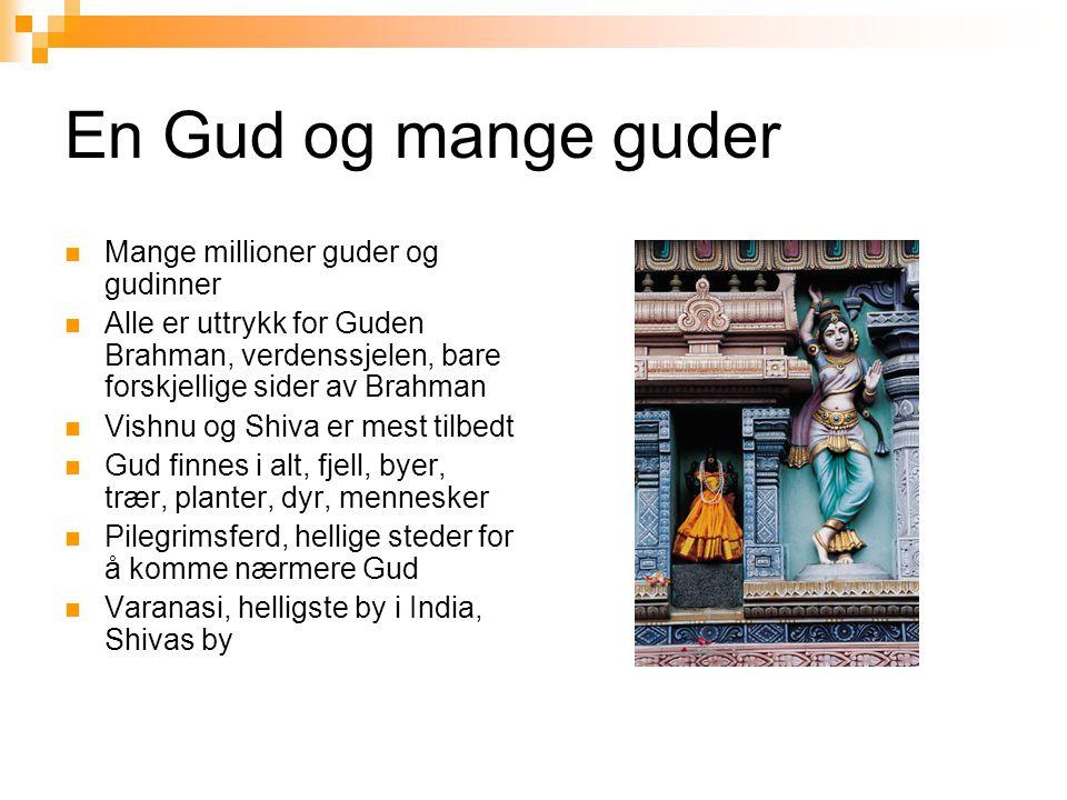 En Gud og mange guder  Mange millioner guder og gudinner  Alle er uttrykk for Guden Brahman, verdenssjelen, bare forskjellige sider av Brahman  Vis