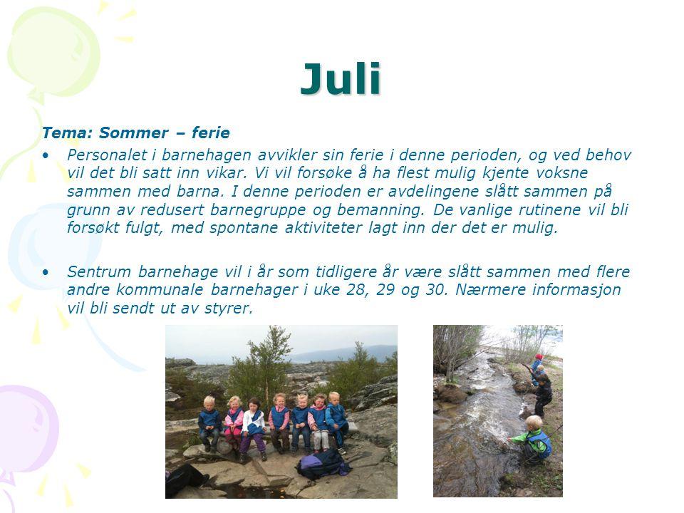 Juli Tema: Sommer – ferie •Personalet i barnehagen avvikler sin ferie i denne perioden, og ved behov vil det bli satt inn vikar.