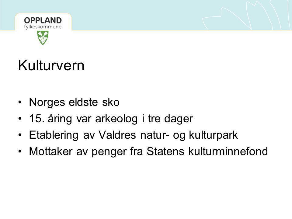 Kulturvern •Norges eldste sko •15. åring var arkeolog i tre dager •Etablering av Valdres natur- og kulturpark •Mottaker av penger fra Statens kulturmi