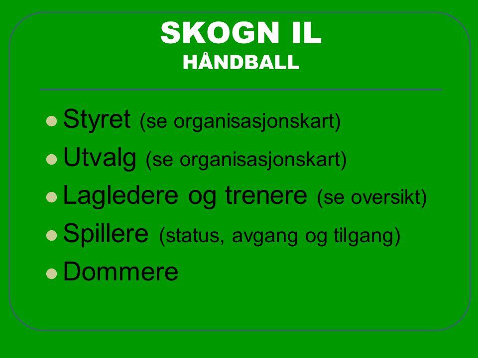 SKOGN IL HÅNDBALL  Styret (se organisasjonskart)  Utvalg (se organisasjonskart)  Lagledere og trenere (se oversikt)  Spillere (status, avgang og tilgang)  Dommere