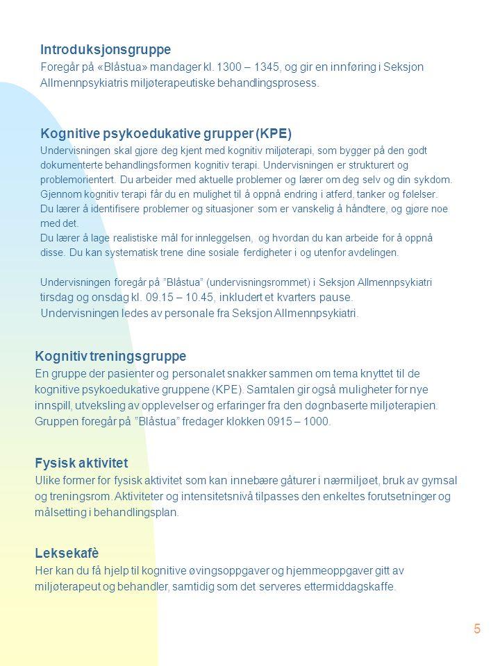 5 Kognitiv treningsgruppe En gruppe der pasienter og personalet snakker sammen om tema knyttet til de kognitive psykoedukative gruppene (KPE). Samtale