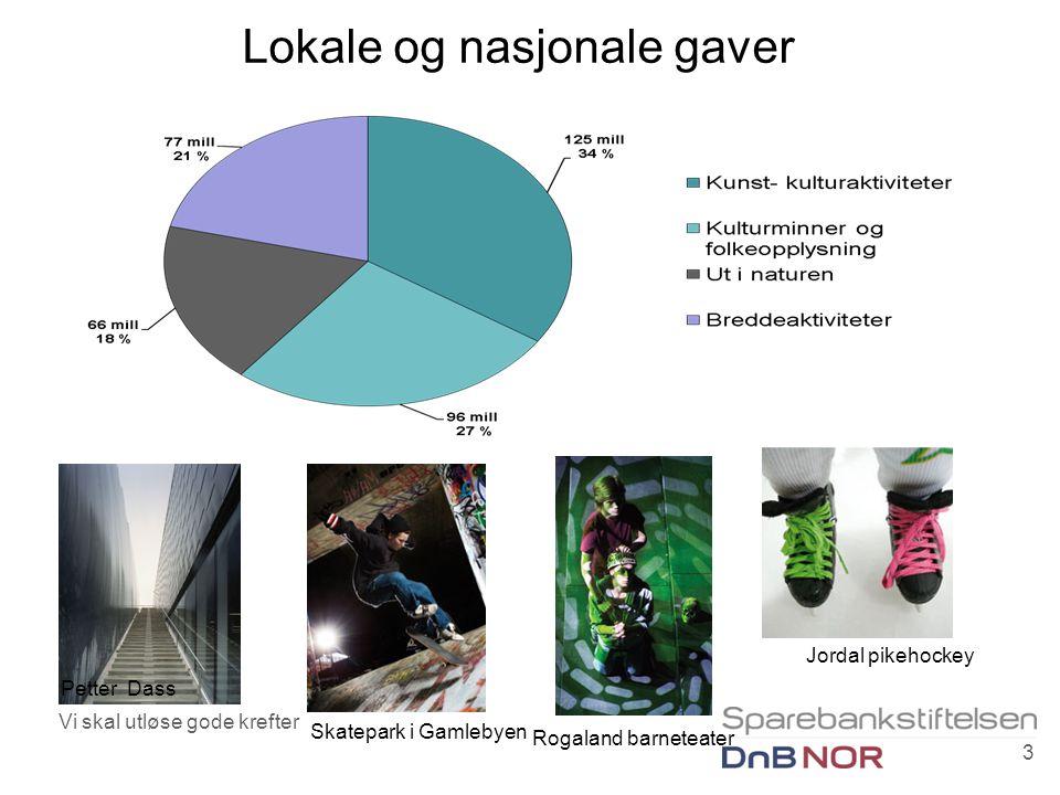 Lokale og nasjonale gaver Vi skal utløse gode krefter 3 Petter Dass Jordal pikehockey Rogaland barneteater Skatepark i Gamlebyen
