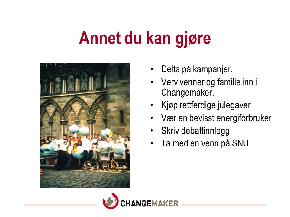 SNU •SNU står for Sør Nord seminar.•Dette er Changemakers leirkonsept.