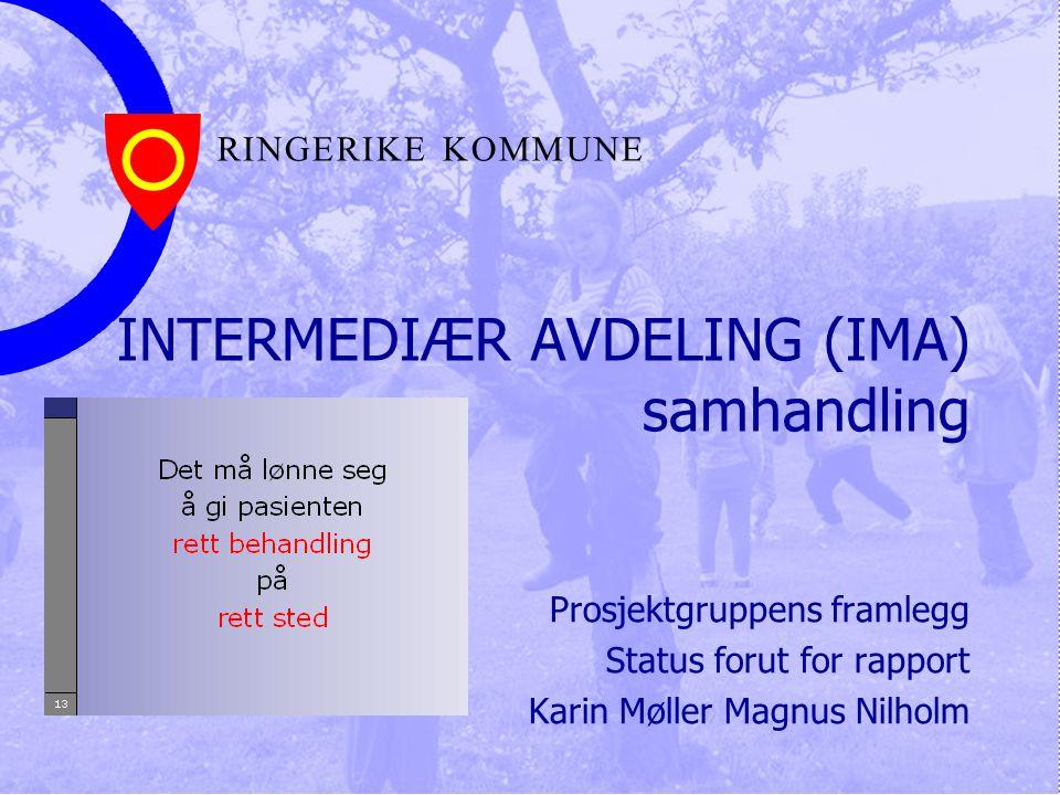 R I N G E R I K E K O M M U N E INTERMEDIÆR AVDELING (IMA) samhandling Prosjektgruppens framlegg Status forut for rapport Karin Møller Magnus Nilholm