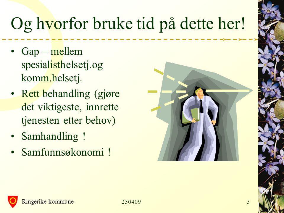 Ringerike kommune 2304094 Disposisjon for i dag •1.