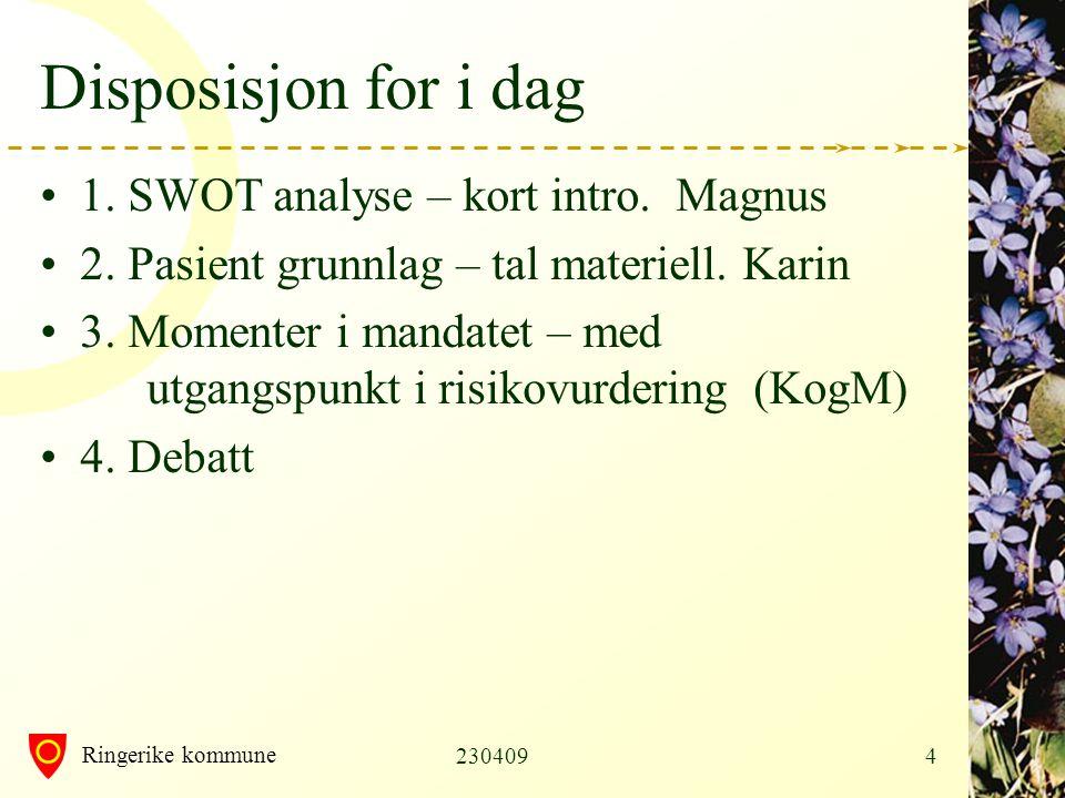 Ringerike kommune 23040915 Organisasjonsmodell Vilkår: samhandling (HF-KH – IK) Momenter med pluss .