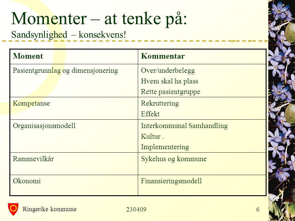 Ringerike kommune 23040917 Plan for prosjekt •Prosjektgruppe: Trond Bjørge, Magnus Niholm og Karin Møller •Rapport ferdig 300409 •SWOT fra dere– i dag.