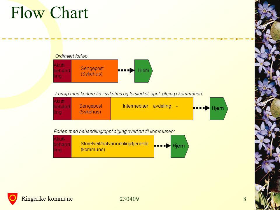 Ringerike kommune 2304099 Flow Chart
