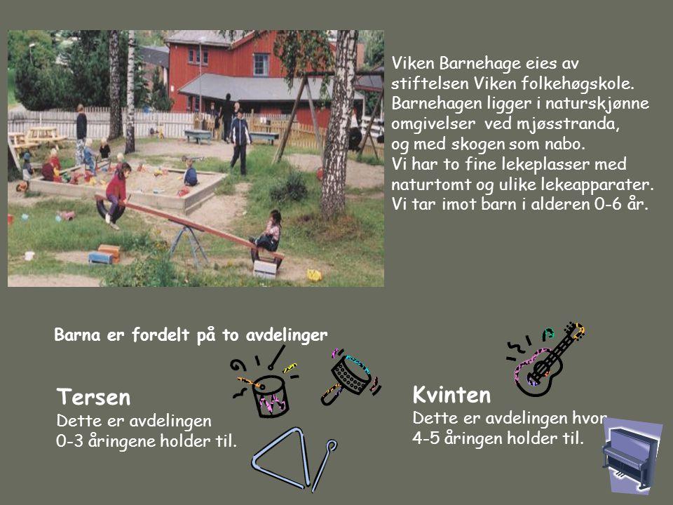 Viken Barnehage eies av stiftelsen Viken folkehøgskole. Barnehagen ligger i naturskjønne omgivelser ved mjøsstranda, og med skogen som nabo. Vi har to