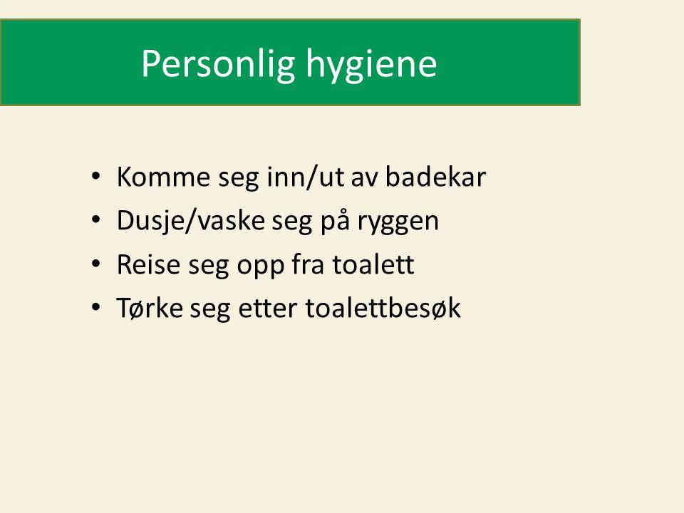 Personlig hygiene • Komme seg inn/ut av badekar • Dusje/vaske seg på ryggen • Reise seg opp fra toalett • Tørke seg etter toalettbesøk