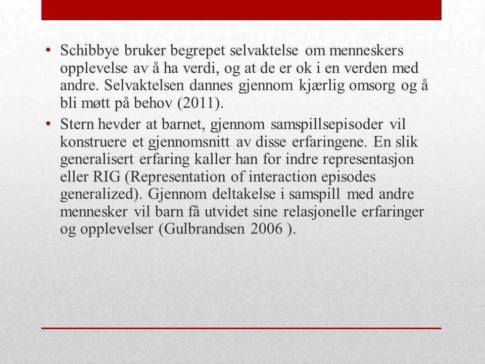 Egenperspektivet (Røkenes og Hansen, 2009) • Bevissthet om verdier og holdninger og bevissthet omkring hvilken betydning personlig væremåte og egne erfaringer har for måten du møter andre på .