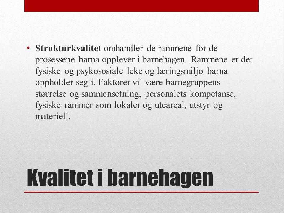 (Røkenes og Hansen, 2009) • Kulturelle faktorer: etnisk og sosial tilhørighet, verdi-, menneske- og livssyn.