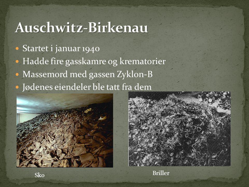  Startet i januar 1940  Hadde fire gasskamre og krematorier  Massemord med gassen Zyklon-B  Jødenes eiendeler ble tatt fra dem Sko Briller