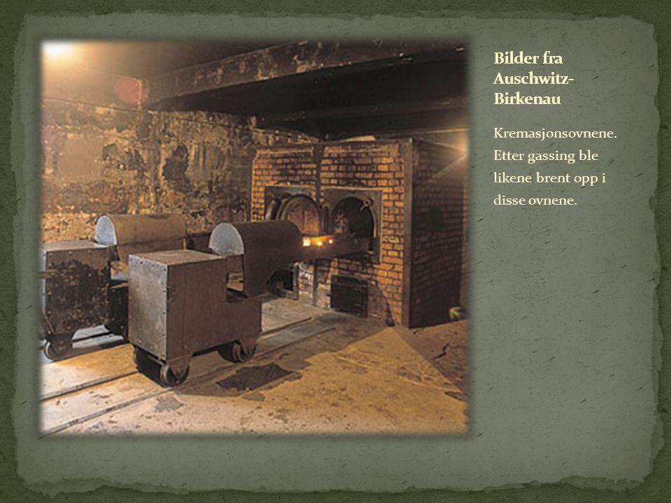 Kremasjonsovnene. Etter gassing ble likene brent opp i disse ovnene.