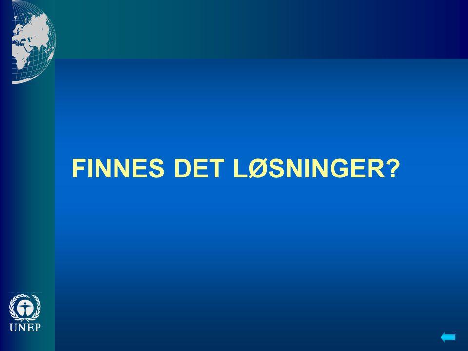FINNES DET LØSNINGER