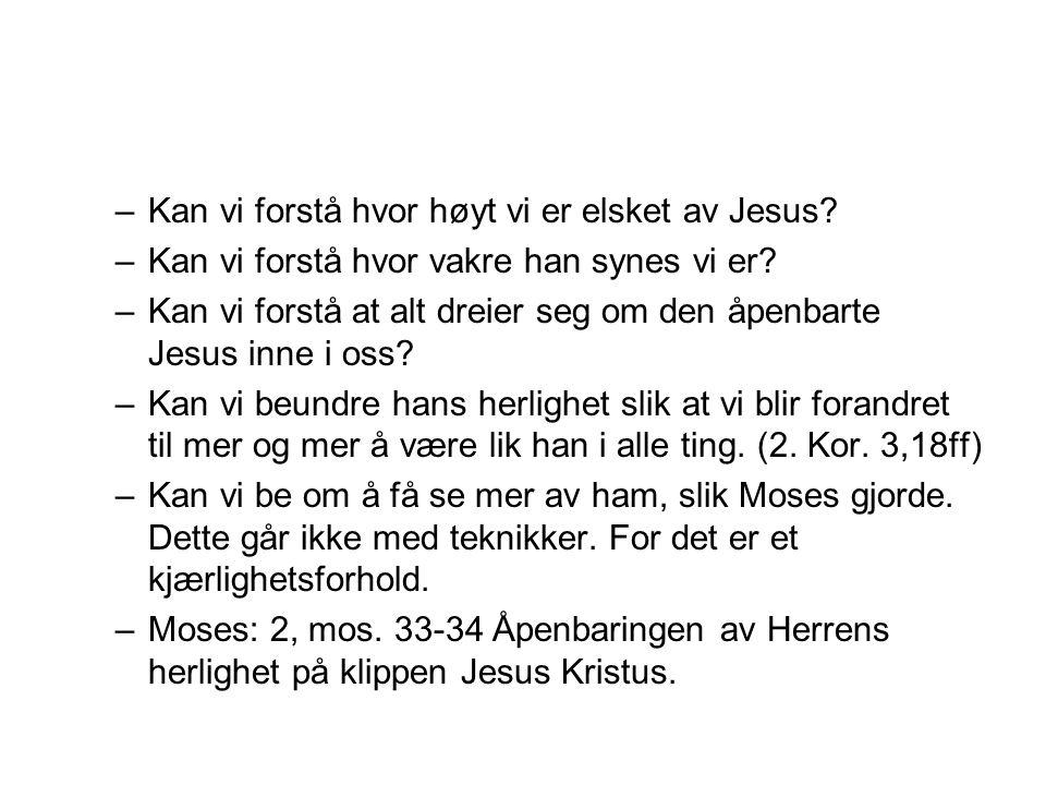 –Kan vi forstå hvor høyt vi er elsket av Jesus? –Kan vi forstå hvor vakre han synes vi er? –Kan vi forstå at alt dreier seg om den åpenbarte Jesus inn