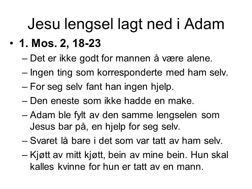 Adam - et forbilde på Jesus •Jesus kom også inn i en søvn.