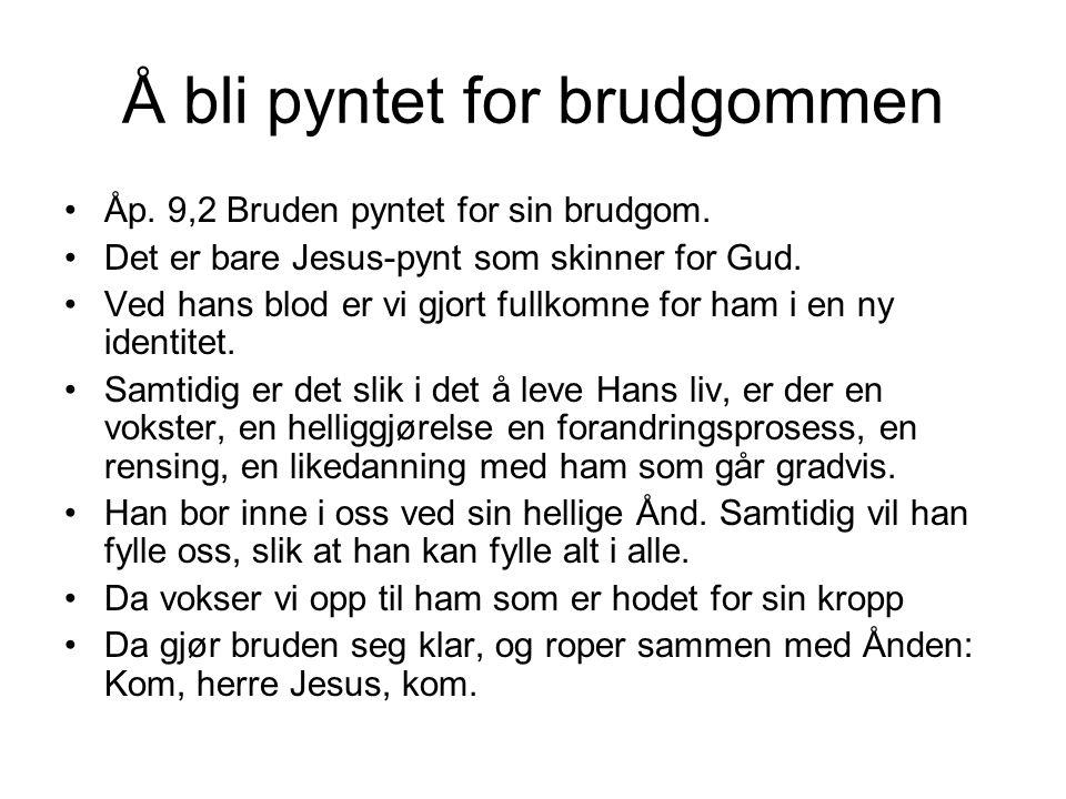 Å bli pyntet for brudgommen •Åp. 9,2 Bruden pyntet for sin brudgom. •Det er bare Jesus-pynt som skinner for Gud. •Ved hans blod er vi gjort fullkomne