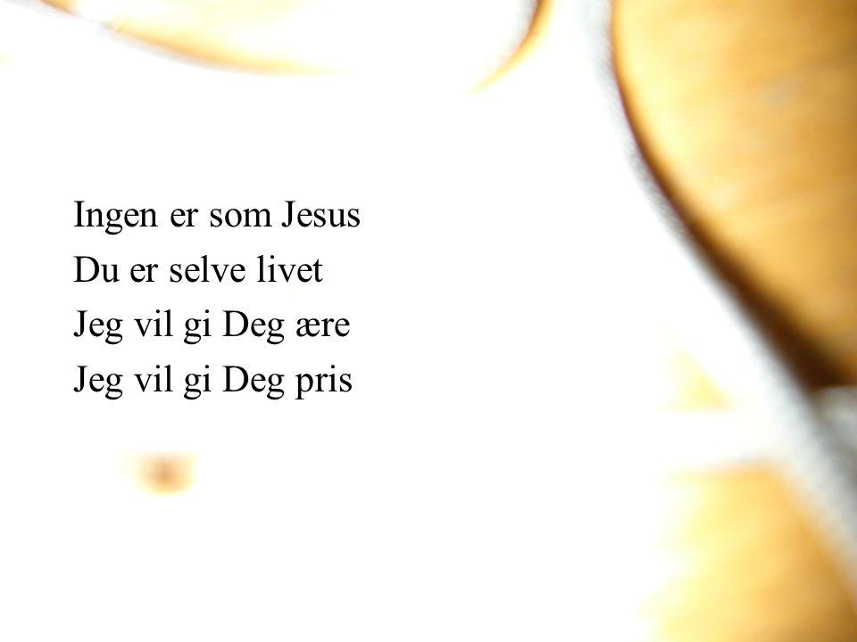 Ingen er som Jesus Du er selve livet Jeg vil gi Deg ære Jeg vil gi Deg pris