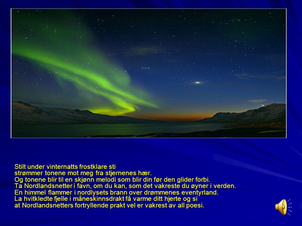 """Sveinulv Jarnæs, står som en av de """"unge døde""""i den nordnorske kultur. Sveinulv Jarnæs, står som en av de """"unge døde""""i den nordnorske kultur. Sveinulv"""