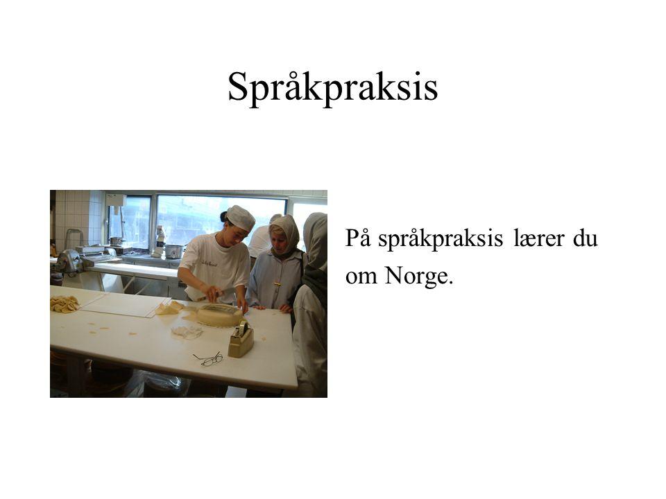 Språkpraksis På språkpraksis lærer du om Norge.