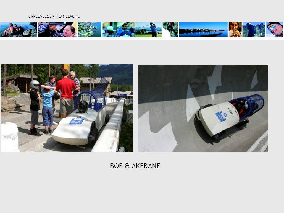 OPPLEVELSER FOR LIVET… BOB & AKEBANE