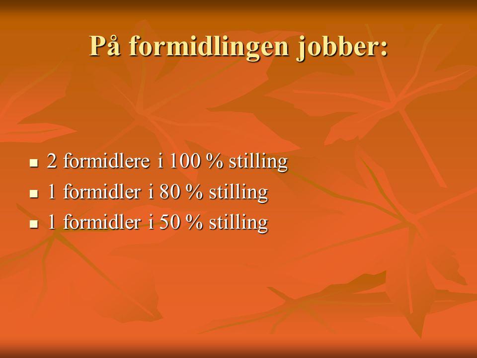 På formidlingen jobber:  2 formidlere i 100 % stilling  1 formidler i 80 % stilling  1 formidler i 50 % stilling