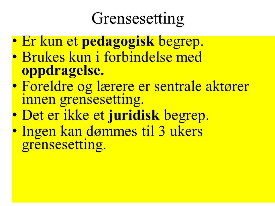 Grensesetting • Er kun et pedagogisk begrep. • Brukes kun i forbindelse med oppdragelse. • Foreldre og lærere er sentrale aktører innen grensesetting.