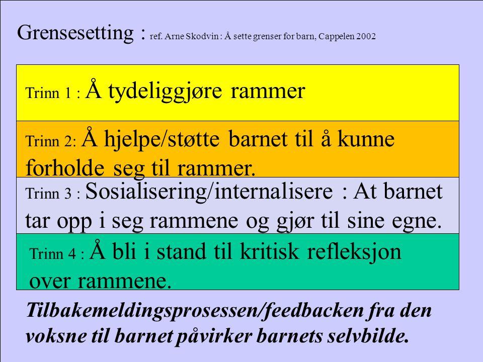 Grensesetting : ref. Arne Skodvin : Å sette grenser for barn, Cappelen 2002 Trinn 1 : Å tydeliggjøre rammer Trinn 2: Å hjelpe/støtte barnet til å kunn