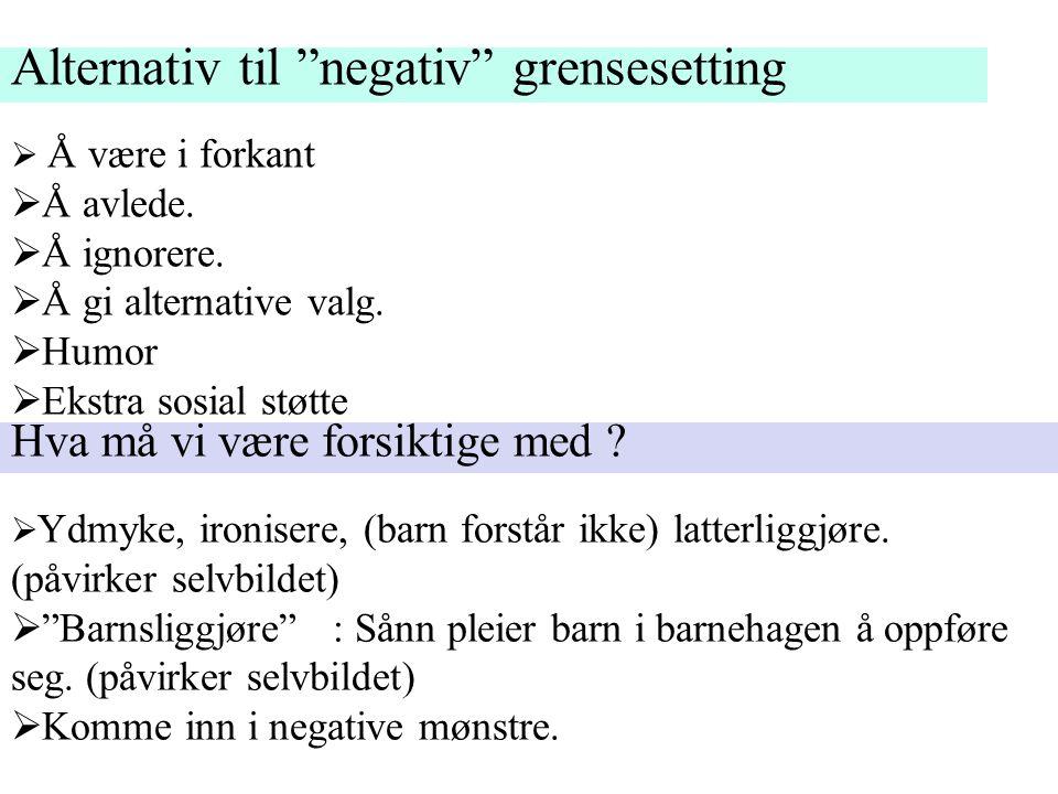 """Alternativ til """"negativ"""" grensesetting  Å være i forkant  Å avlede.  Å ignorere.  Å gi alternative valg.  Humor  Ekstra sosial støtte Hva må vi"""