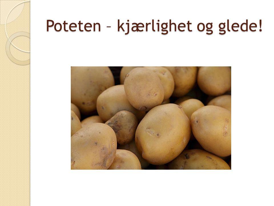 Bakgrunn og problemstilling  Potetens år (FN)  Problemstilling: ◦ Hvilken mening legger de eldre i poteten.