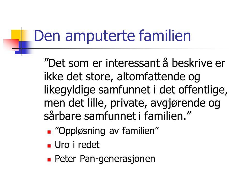 """Den amputerte familien """"Det som er interessant å beskrive er ikke det store, altomfattende og likegyldige samfunnet i det offentlige, men det lille, p"""