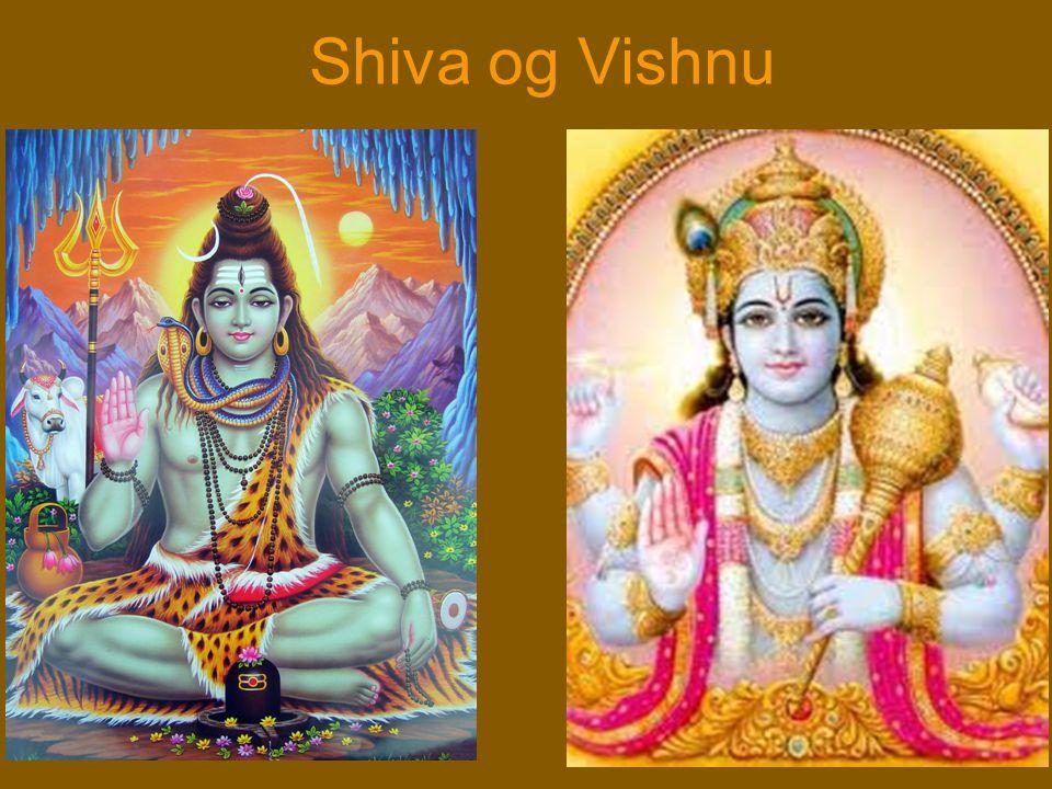 Shiva og Vishnu